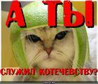 https://lolkot.ru/2010/07/07/kotechevstvo/