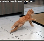 https://lolkot.ru/2010/07/06/koto-dansing/
