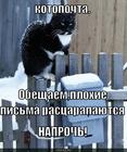 https://lolkot.ru/2010/06/12/kotopochta/