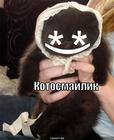 https://lolkot.ru/2010/05/18/kotosmaylik/