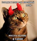https://lolkot.ru/2013/07/11/kovarnyy-plan-2/