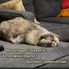 https://lolkot.ru/2018/08/27/kratkoye-soderzhaniye-romana/