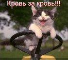https://lolkot.ru/2011/08/05/krov-za-krov/