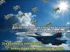 https://lolkot.ru/2011/06/06/krugom-koshki/
