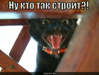 https://lolkot.ru/2010/06/08/kto-tak-stroit/