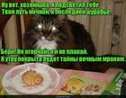 https://lolkot.ru/2018/06/05/kurabinaya-tayna/