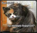 https://lolkot.ru/2010/08/05/kys-kys/