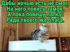https://lolkot.ru/2018/10/07/lapkovyy-nepuskatel/