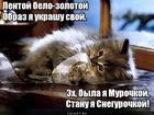 https://lolkot.ru/2020/01/12/lentochnoye-preobrazheniye/