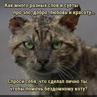 https://lolkot.ru/2021/01/09/lichnyy-spros/