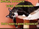 https://lolkot.ru/2010/10/17/lift-slomalsya/