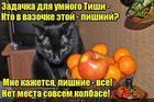 https://lolkot.ru/2018/11/03/lishenets-2/