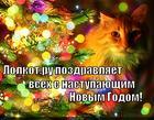 https://lolkot.ru/2014/12/29/lolkot-ru-pozdravlyayet-vseh-s-nastupayuschim-novym-godom/