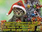 https://lolkot.ru/2014/01/03/luchshiy-moy-podarochek-eto-ty/