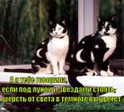 https://lolkot.ru/2014/12/12/lunnyy-zagar/