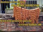 https://lolkot.ru/2014/12/03/lyubitel-kolbasy/