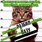 https://lolkot.ru/2017/02/13/lyublyu-razbivat/