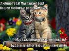 https://lolkot.ru/2013/04/05/lyublyu-2/