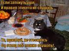 https://lolkot.ru/2014/12/31/manernyy-naglets/