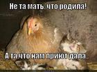 https://lolkot.ru/2012/12/05/mat/