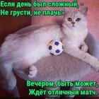 https://lolkot.ru/2018/12/10/match-na-dosuge/