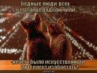 https://lolkot.ru/2010/06/10/matritsa-2/