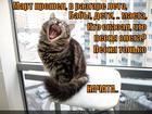 https://lolkot.ru/2013/08/04/mayetyot-suyetu/