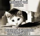 https://lolkot.ru/2010/11/26/mayskiy-chay/