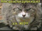 https://lolkot.ru/2010/10/14/minzdrav-preduprezhdayet/