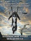 https://lolkot.ru/2012/09/13/mnogo-adrenalina/