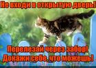 https://lolkot.ru/2017/05/16/motivator/