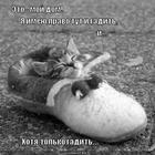 https://lolkot.ru/2012/08/04/moy-dom/