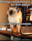 https://lolkot.ru/2010/09/02/mozhesh-idti/