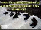 https://lolkot.ru/2011/02/24/mozhno-rasslabitsya/