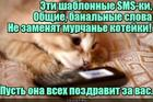 https://lolkot.ru/2019/01/09/murchalnoye-pozdravleniye/