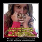 https://lolkot.ru/2013/10/03/muzhika-b-tebe/