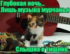 https://lolkot.ru/2018/05/19/muzyka-v-tishine/