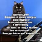 https://lolkot.ru/2018/06/15/muzykalnyy-vkus/