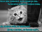 https://lolkot.ru/2015/05/23/na-brovyah-2/