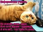https://lolkot.ru/2018/04/10/na-pervyy-nulevoy-rasschitays/