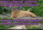 https://lolkot.ru/2015/01/10/na-svidanii-ya-lyublyu-poyest/