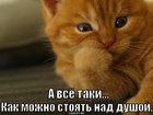https://lolkot.ru/2012/08/09/nad-dushoy/
