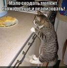 https://lolkot.ru/2012/08/21/nado-realizovat/