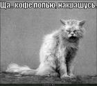 https://lolkot.ru/2011/10/27/nakrashus/