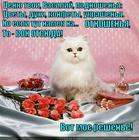 https://lolkot.ru/2013/12/26/namek-na-otnoshenya/
