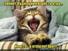 https://lolkot.ru/2017/07/05/naprasnyy-zvon/