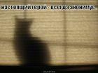 https://lolkot.ru/2011/05/24/nastoyaschiy-geroy/