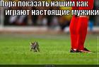 https://lolkot.ru/2010/09/12/nastoyaschiye-muzhiki/