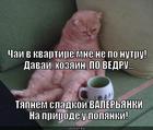 https://lolkot.ru/2014/02/06/nazad-na-prirodu/