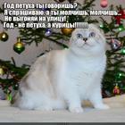 https://lolkot.ru/2017/01/05/ne-bud-kuritsey/